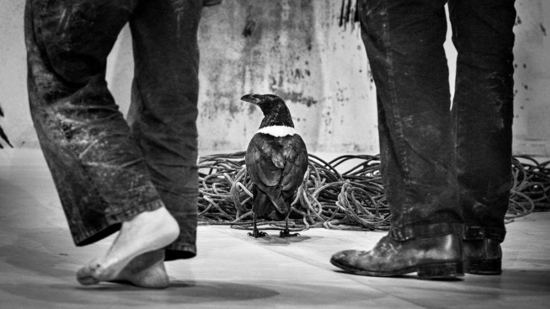 © Francois Passerini